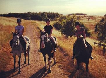 Spanish Bit Riding School